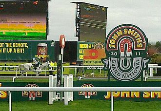 Grand National - The Grand National in 2011