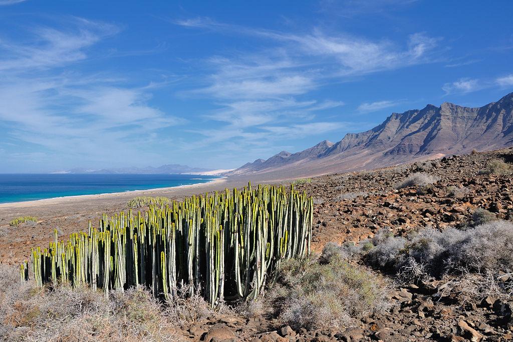 Fuertaventura, Canary Islands, Spain
