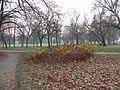 2012-Tychy-Park Solidarności-foto-Beata-Wąsowska 1.jpg