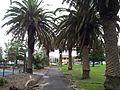 2013-02-24 Shelly Beach, Cronulla, NSW - 01.JPG