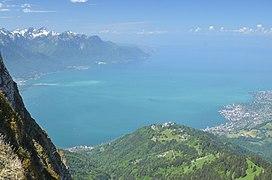 Vitesse de datation Lugano site de rencontres gratuit Bendigo