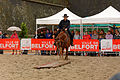 2015-08-23 16-15-59 rallye-equestre.jpg