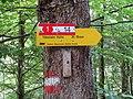 2017-07-23 (50) Fingerpost to Ybbstaler Hütte at Dürrenstein (Ybbstaler Alpen).jpg