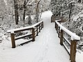 2018-03-21 12 08 23 View along a snow-covered walking path as it crosses a bridge in the Franklin Glen section of Chantilly, Fairfax County, Virginia.jpg