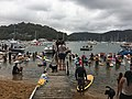 2019 Scotland Island Pittwater NSW Christmas Day pooch race 9.jpg