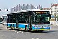 3833982 at Huangcun Park (20190713140151).jpg