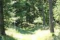9681 Ranum, Denmark - panoramio (3).jpg
