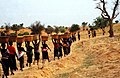 ASC Leiden - W.E.A. van Beek Collection - Dogon agriculture 05 - The women of a neighborhood ward with manure on their way to the field of one of them, Tireli, Mali 1990.jpg