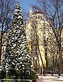 A Christmas tree in Patriarshy Ponds, Moscow.jpg