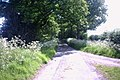A Quiet country Lane - geograph.org.uk - 443101.jpg