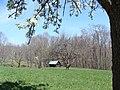 A View From the Farm (613eb3a7-ac3c-404a-ae31-0423616091c9).JPG