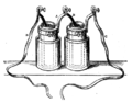 A dictionary of chemistry - Bunsen battery.png