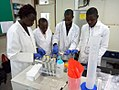 A group of African scientists working as a team.jpg