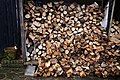 A log pile at Nuthurst, West Sussex, England 01.jpg
