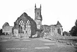 Ruined abbey of Ennis