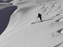 Горнные лыжи sportzone.in.ua