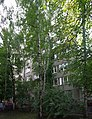 Academic District, Moscow, Russia - panoramio (43).jpg