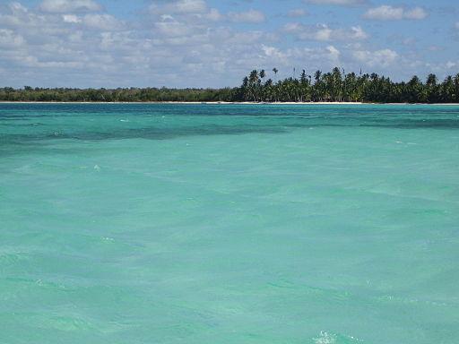 Excursiones - Isla Saona