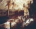 Adelsberger Grotte - panoramio - Adolf Riess (1).jpg
