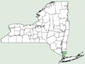 Adonis vernalis NY-dist-map.png