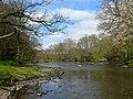 Afon Elan - River Elan - geograph.org.uk - 1282630.jpg
