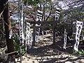 Ahiratsu jinjya shrine , 吾平津神社 - panoramio - z tanuki.jpg