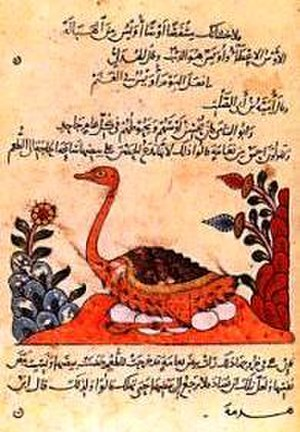 History of evolutionary thought - A page from the Kitāb al-Hayawān (English: Book of Animals) by al-Jāḥiẓ