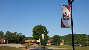 Alabama A&M University - AAMU Campus Quadrangle, 2016