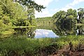 Alapaha River Wildlife Management Area lake a.jpg