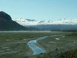 Alsek River - Alsek River (in distance) near junction with Sugden Creek inside Kluane National Park