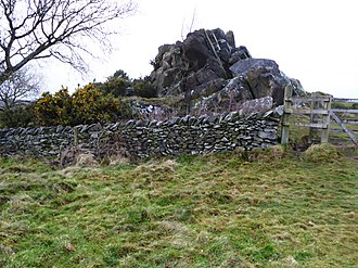 Leicestershire and Rutland Wildlife Trust - Drystone wall and rocky outcrop in Altar Stones