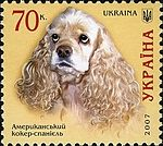 American-Cocker-Spaniel Ukraine 2007 stamp.jpg