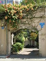 שער הכניסה לבית אמזלג