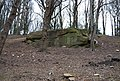 An outcrop of Tunbridge Wells Sandstone near the Happy Valley Rocks - geograph.org.uk - 1227367.jpg
