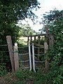 An unusual stile - geograph.org.uk - 494595.jpg