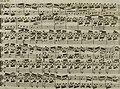Andante du celébré Haydn - arrangé pour la harpe avec accompagnement de violon ad libitum (1795) (14804661663).jpg