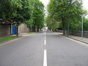 Anglesea Road -  Anglesea Road in Ballsbridge