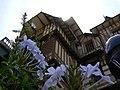 Angulo floral - panoramio.jpg