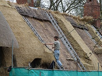 Roof pitch - Thatch is one of the oldest roofing materials and needs a steep pitch to drain properly