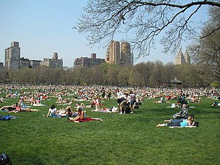 Sheep Meadow Meadow in New York Citys Central Park