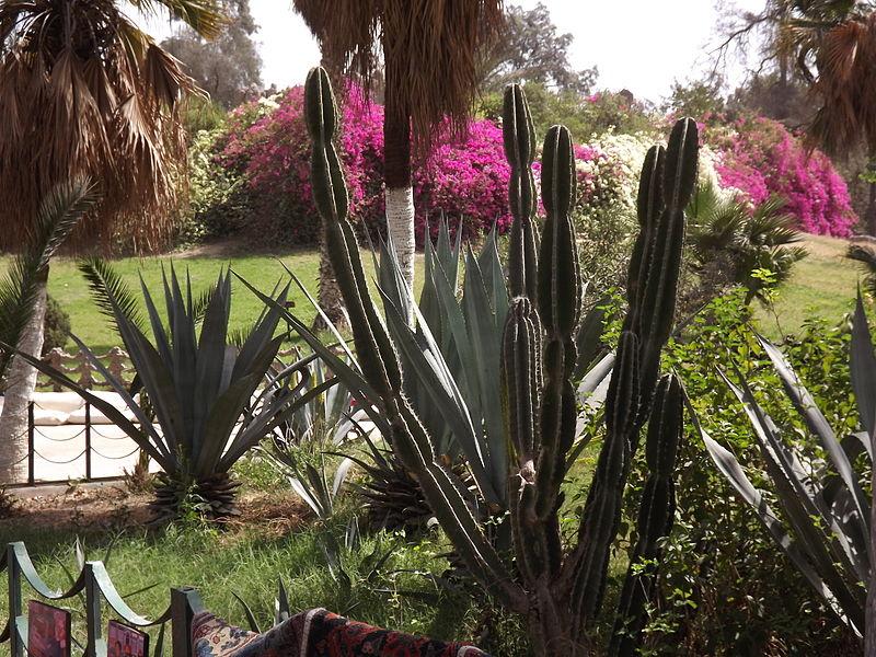 أصحابى وصحباتى ..تعرف / تعرفي على اجمل الحدائق في العالم / موضوع متجدد - صفحة 2 800px-Aquarium_Grotto_Garden_March_2013_by_Hatem_Moushir_16