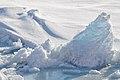 Arctic Ice (4370263101).jpg