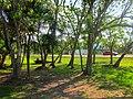 Area verde a un costado de Playa Dos Mulas, Chetumal, Q. Roo - panoramio.jpg