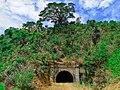 Aringay Centennial Tunnel.jpg