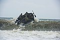 Army National Guard SF combat divers train 150429-A-KC506-794.jpg