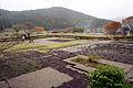 Asakura Yakata of Ichijodani Asakura Family Historic Ruins14n4592.jpg