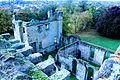 Ashby de la Zouch Castle.JPG