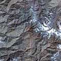 Aster pareechu Tibet 1.jpg