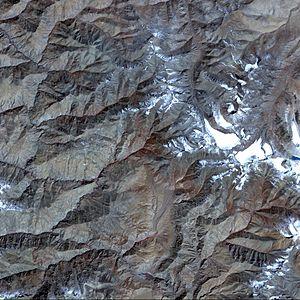 Aster pareechu Tibet 1