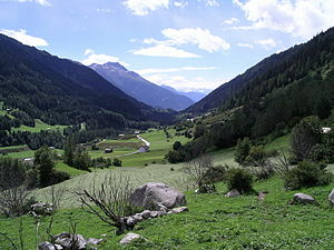Niederwald, Switzerland - View of the valley from Niederwald